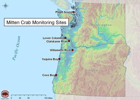 mitten_crab_map